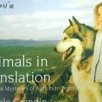 テンプル・グランディン著『動物感覚 アニマル・マインドを読み解く』