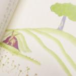 『星の王子さま』―麦畑の色